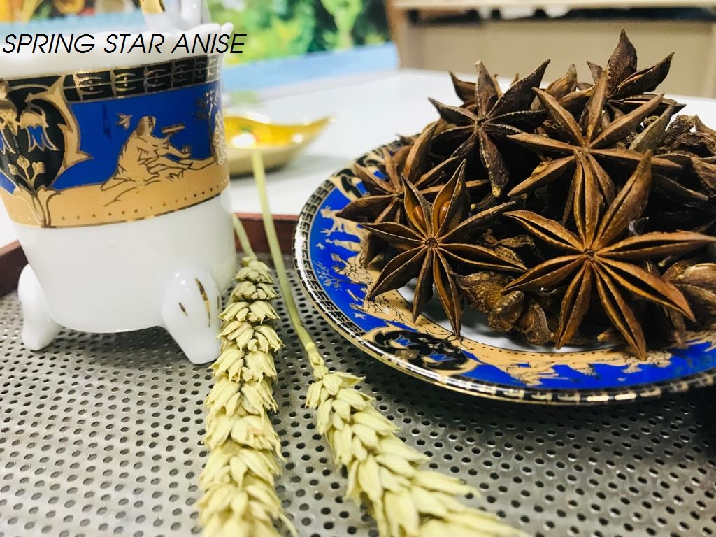 Spring Star Aniseed