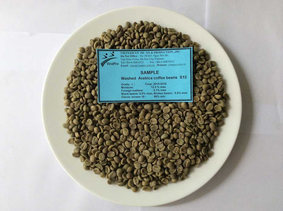 washed arabica coffee bean s18