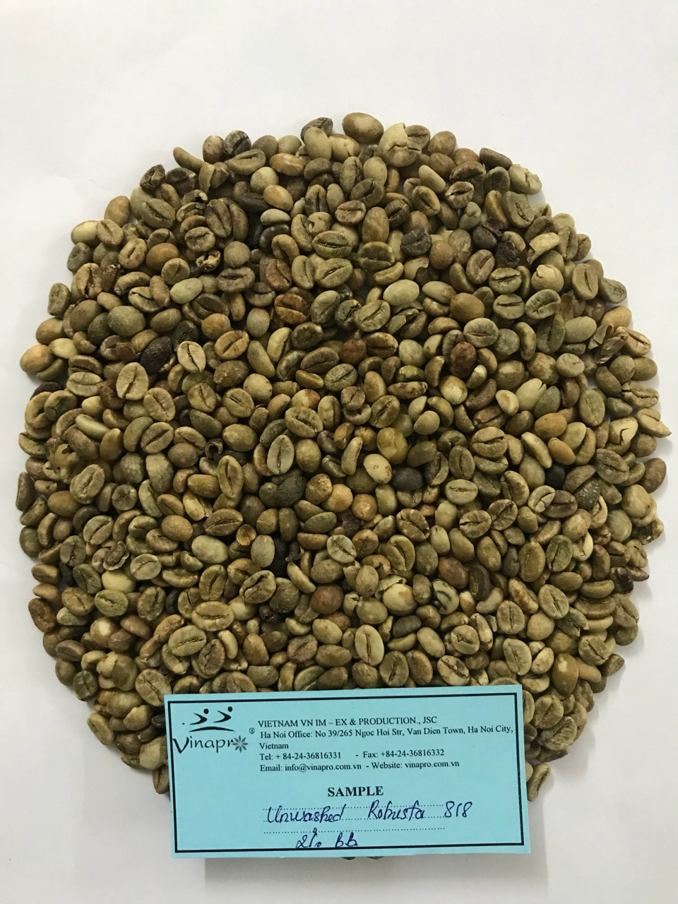 unwashed robusta coffee bean s16-s18