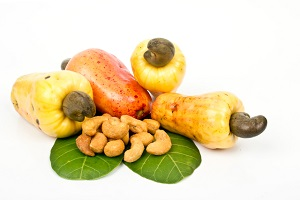 CASHEW NUTS MARKET REPORT IN DECEMBER 2020
