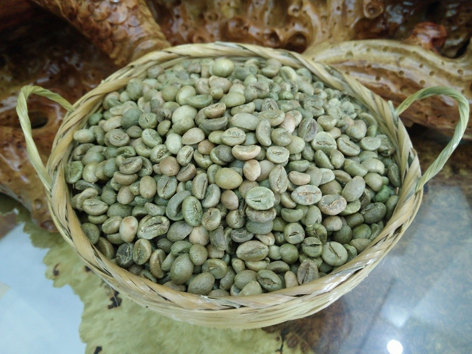 Coffee price today on April 25, 2019 continued to drop by VND100 / kg in some key coffee growing regions of the Central Highlands and the South