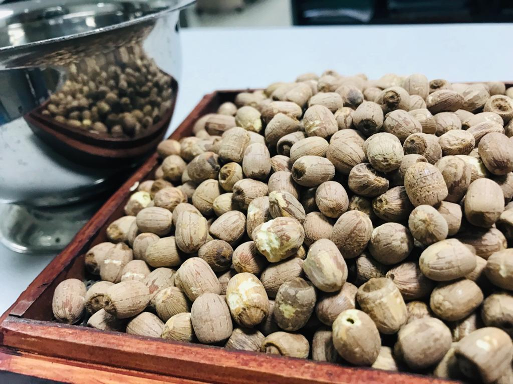 red lotus seeds 4