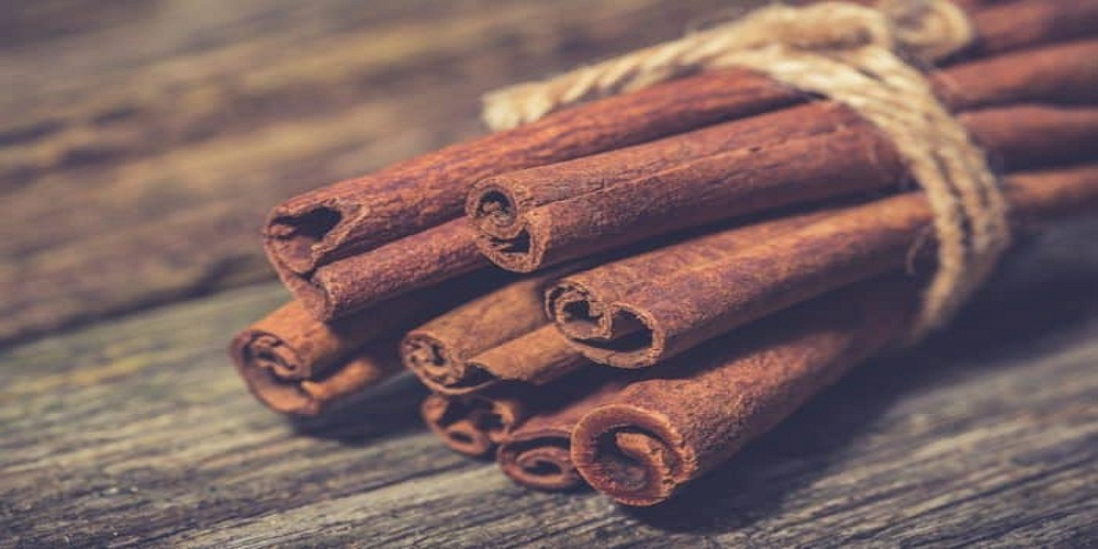 CINNAMON EXPORTS BY COUNTRY