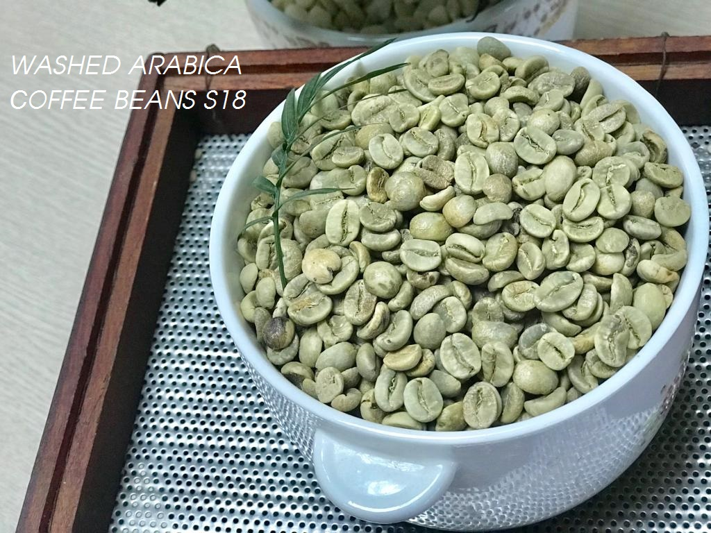 washed arabica coffee bean s18 3